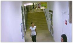 ip видеокамеры в системах безопасности