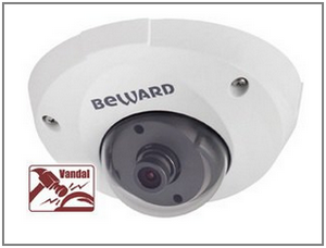 купольная камера видеонаблюдения ip B1710DM